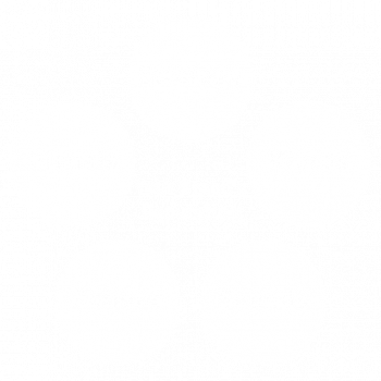 Your Brand's Reputation